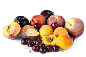 stone fruit growers